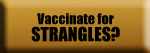 Vaccinate for Strangles?